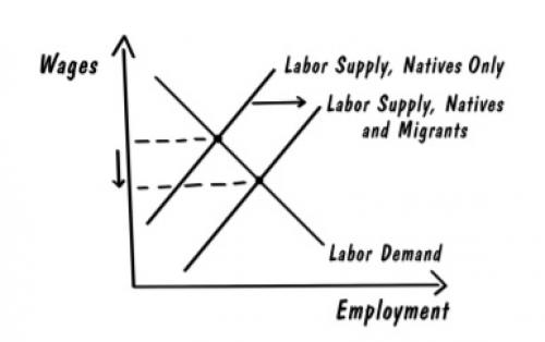Napkin Economics